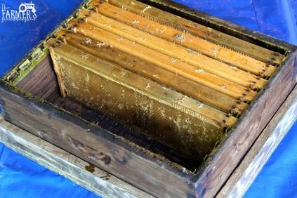 Empty frames in hive body